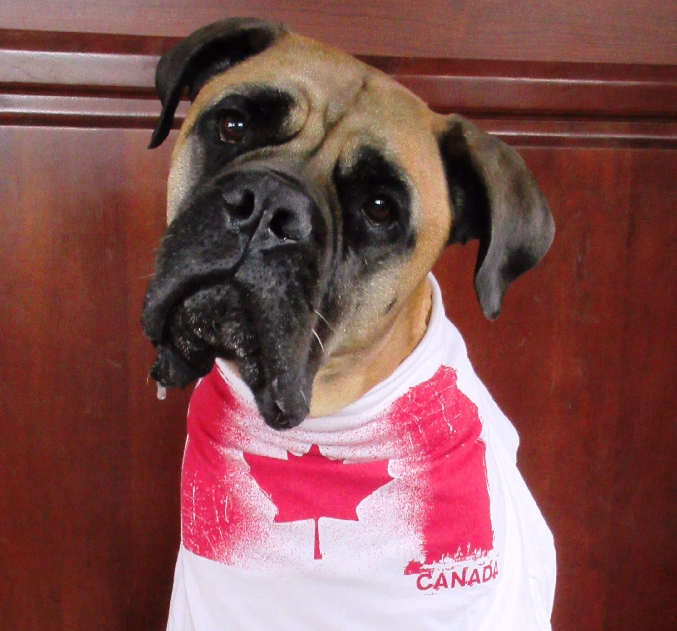 Happy Canada Day from Emmy