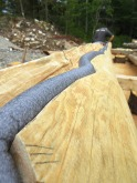 Starting insulation on row four log